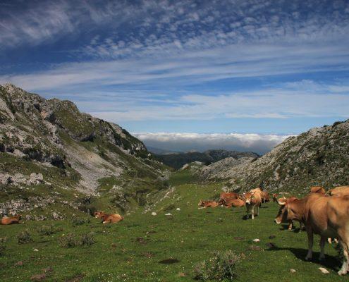 Ruta al Mirador de Ordiales, Caín de Valdeón, Principado de Asturias, España